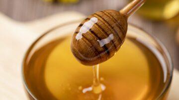 Regionaler Honig aus Hohenkammer