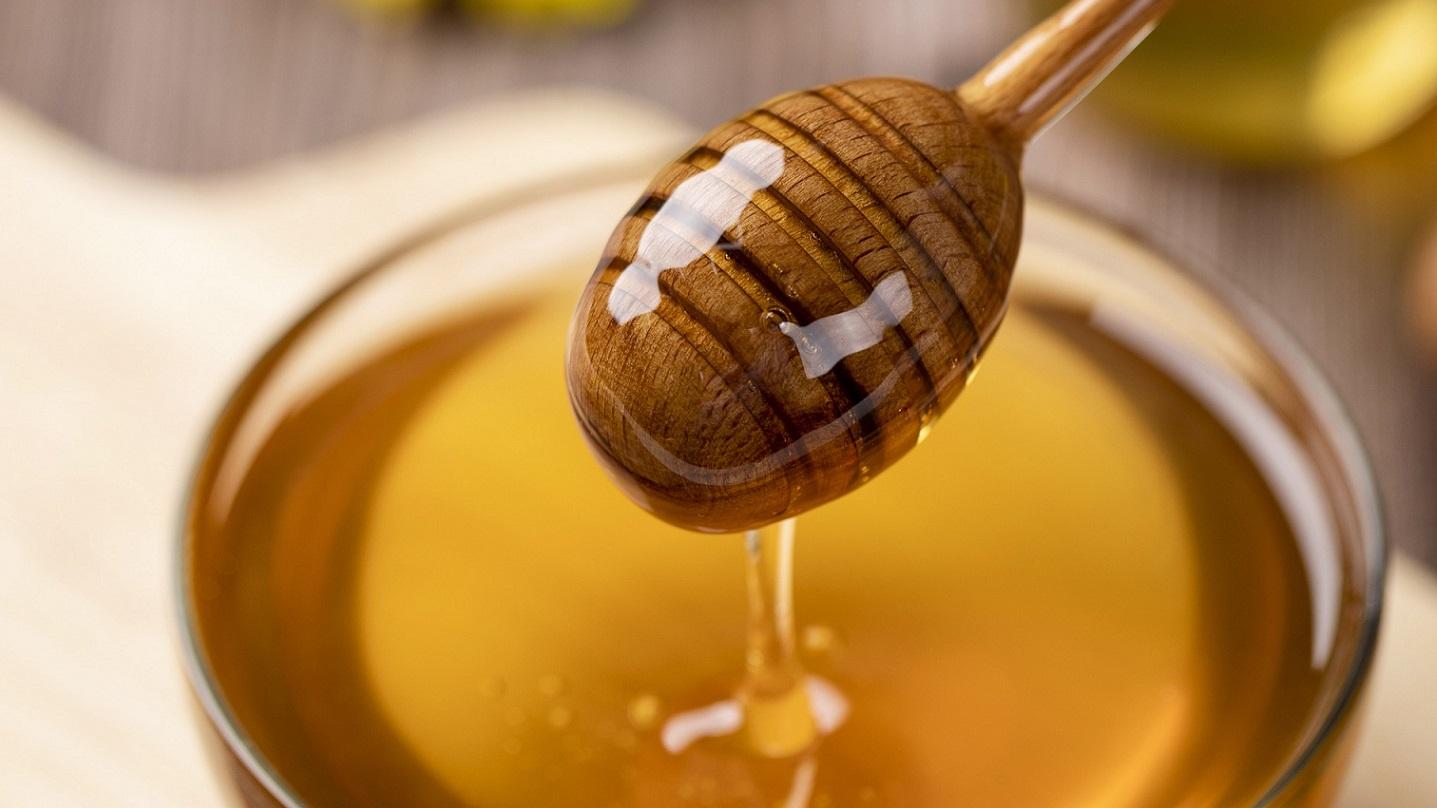 Honig aus Hohenkammer
